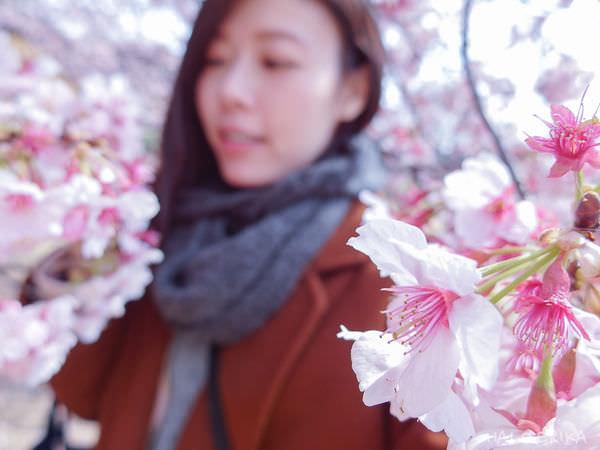日本|2017東京女子一人遊♥10天9夜 東京/川越/富士山自助旅行 行前重點規劃-懶人包