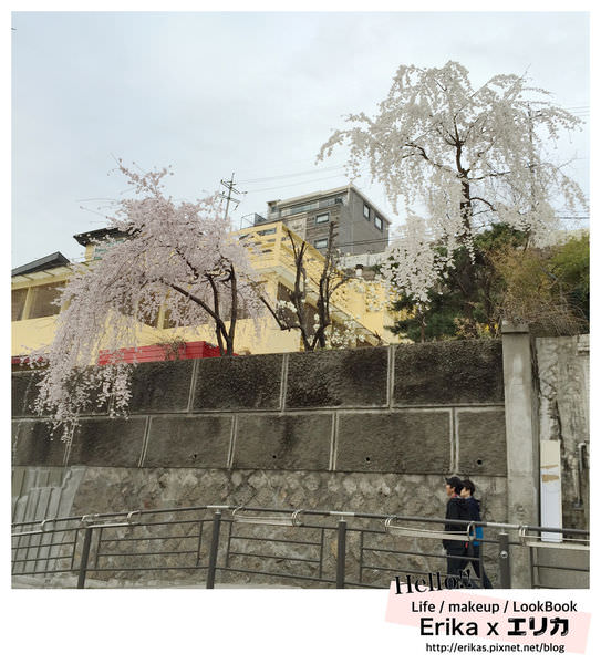IMG_4547_副本